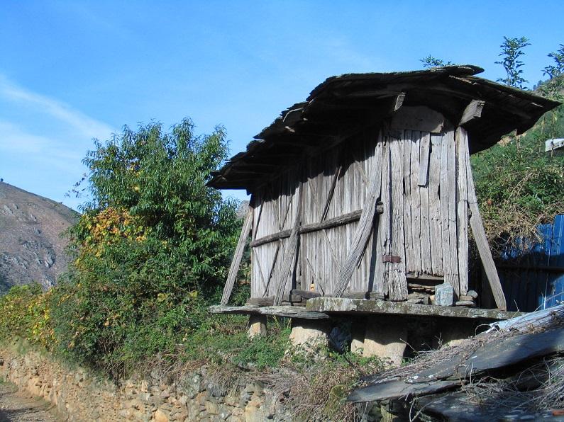 Espigueiro em mau estado de conservação na serra de Montemuro. Note-se o emprego do granito e do xisto na base, a cobertura em ardósia e o corpo inteiramente construído em madeira