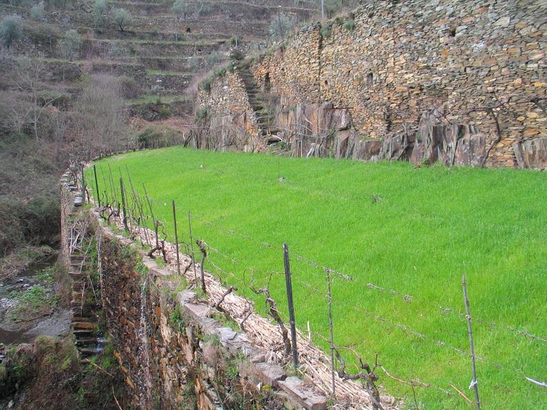 A agricultura nas encostas, de Portugal à Grécia, do Peru ao extremo-oriente só é muitas vezes possível graças à construção de socalcos, formando paisagens culturais de rara beleza