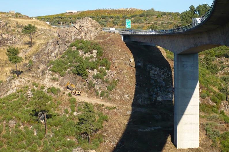 Morcegos encontraram abrigo nos viadutos do antigo IP4 em Trás-os-Montes!
