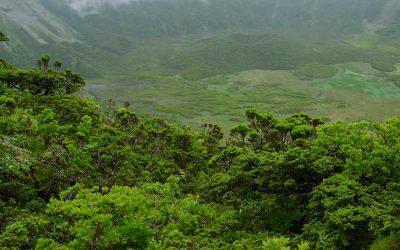 """Mãe d'água integra o consórcio """"Support for the Natura 2000 Biogeographical Process"""""""