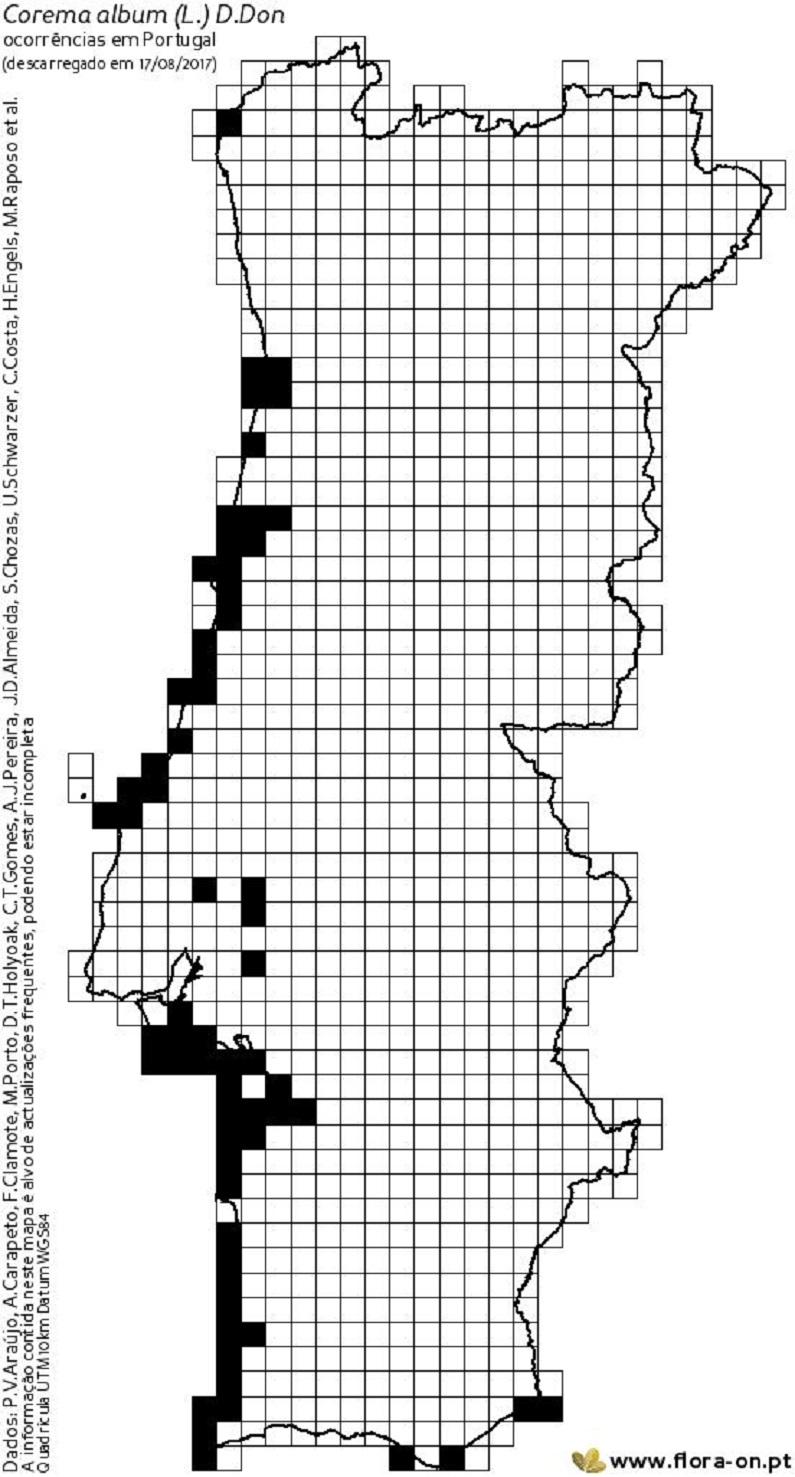 Mapa da distribuição de Corema album em Portugal continental, segundo a flora-on. Dado tratar-se de um mapa elaborado com base em contributos é natural que não corresponda á distribuição real da espécie, vindo a aumentar a área com novos dados e contributos
